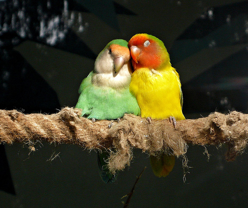 real-love_9-reasons-why-a-relationship-is-worth-fighting-for