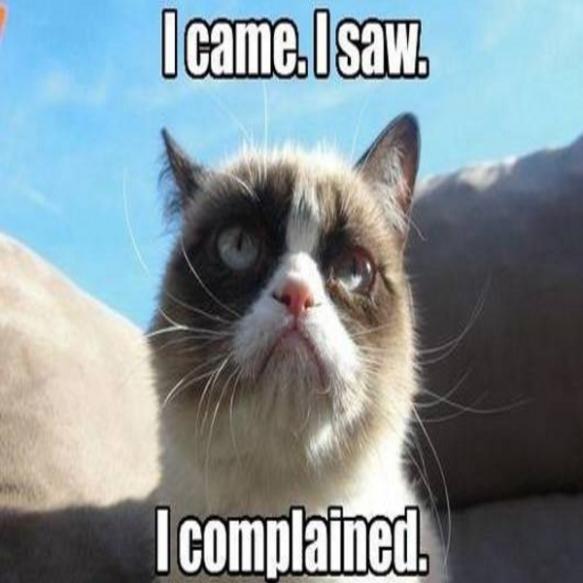 funny_cat_memes7